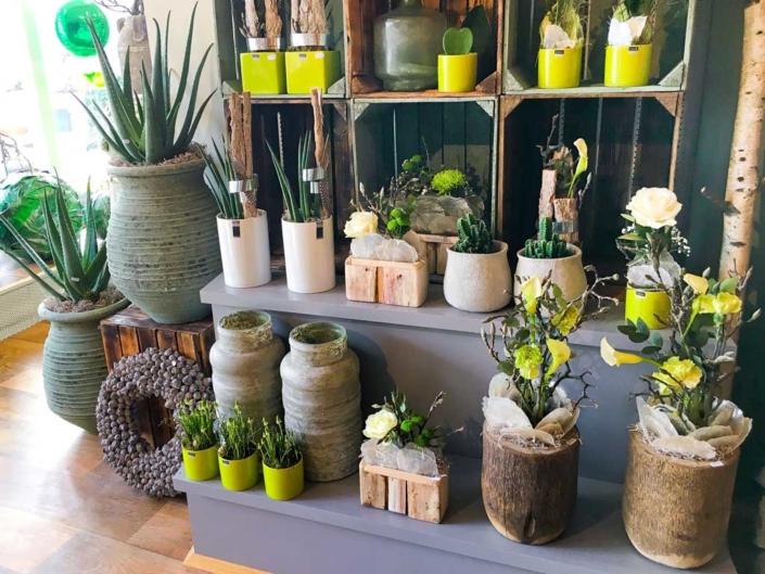Bluetenecht - Blumen, Floristik, Geschenkartikel: Eulering-Wahl, Bottrop-Kirchhellen