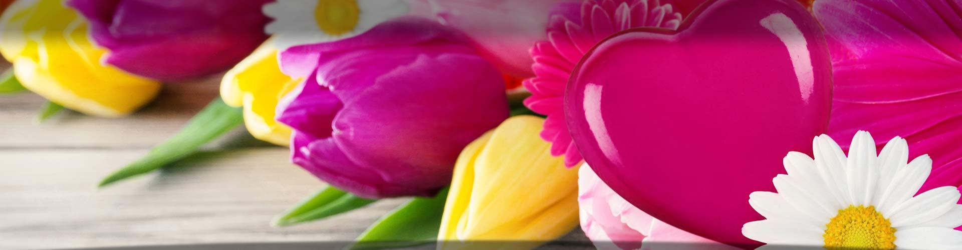 Blumengeschäft Bottrop - Blütenecht