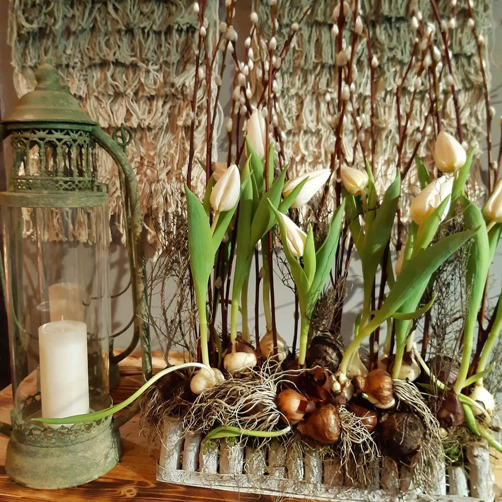 Bluetenecht-Blumenladen-Bottrop-Kirchhellen